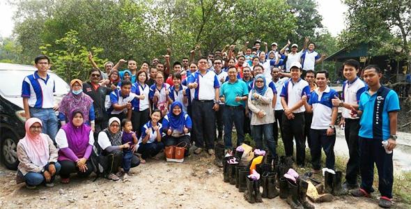 Mangrove Planting Main