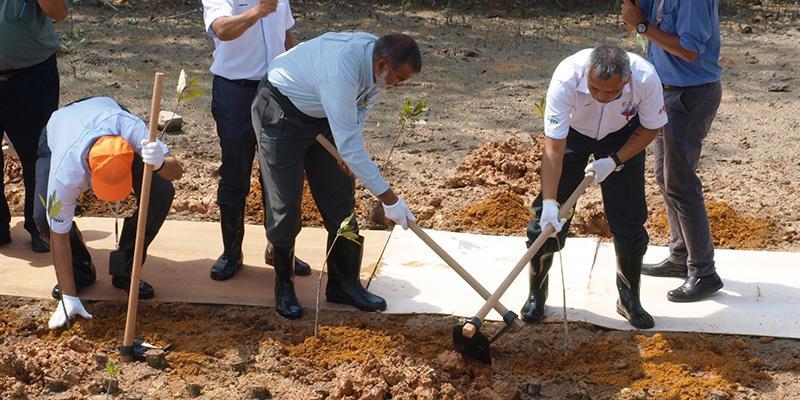 IKEA Mangrove Planting 04